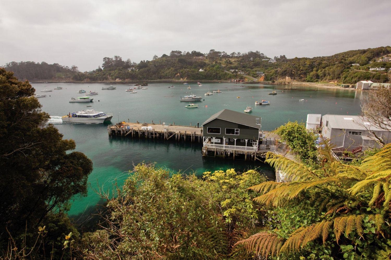 Stewart-Island